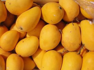 Mango – The King of Fruits and its Health Benefits